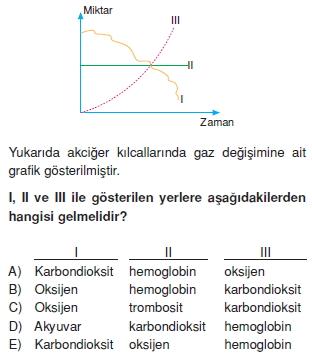 Solunumsistemikonutesti1005