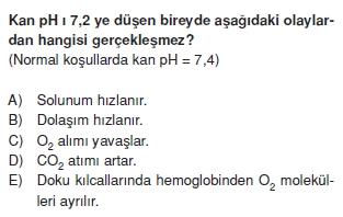 Solunumsistemikonutesti3003