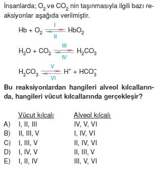 Solunumsistemikonutesti3004