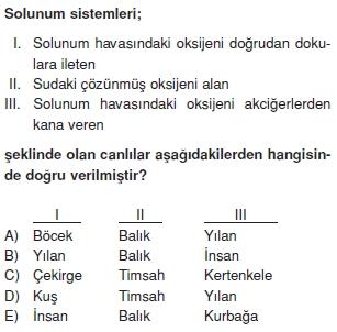 Solunumsistemikonutesti3009