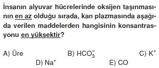 Solunumsistemikonutesti4001