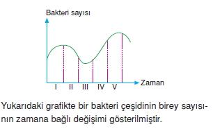 canlilarinsiniflandirilmasicözümlütest1004