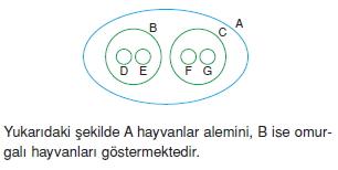 canlilarinsiniflandirilmasicözümlütest2002
