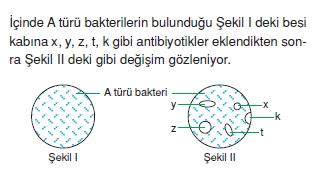 canlilarinsiniflandirilmasicözümlütest2003