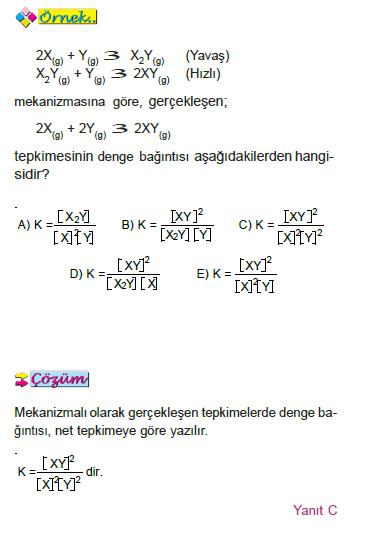 denge_bagintilari_çözümlü_test