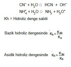 hidroliz_denge