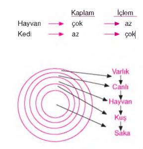 kaplam iclem