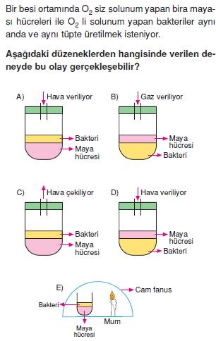 solunumcözümlütest2 (3)