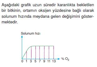 solunumcözümlütest2 (4)