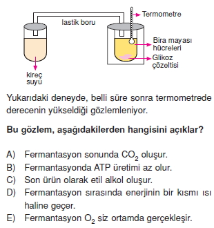 solunumcözümlütest2