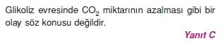 solunumcözümlütest2 (19)
