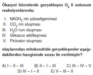 solunumcözümlütest2 (8)