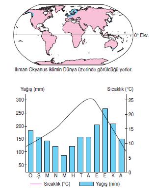 ılıman_okyanus_iklimi