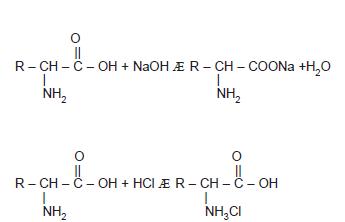 Amino_Asitlerin_Fiziksel_ve_Kimyasal_ozellikleri