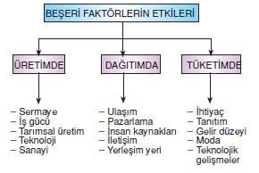 Beseri_faktorler