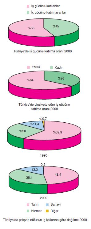 _Calisan_Nufusun_Ekonomik_Faaliyet_Kollarina