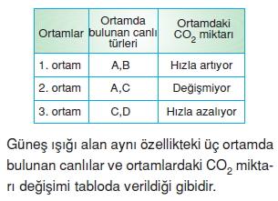 Canlilarveenerjiilişkilericözümlütest1007