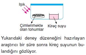 Canlilarveenerjiilişkilerikonutesti6001