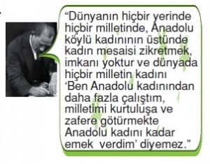 Demokrasininserüvenicözümlütest006