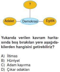 Demokrasininserüvenikonutesti3006