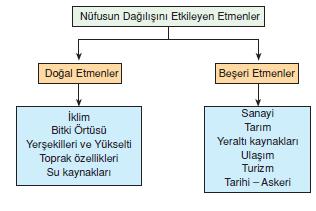 Dunyada_Nufusun_Alansal_Dagilisi