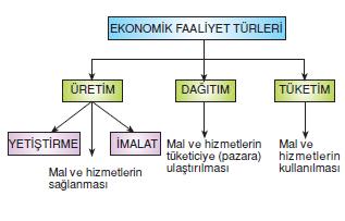 Ekonomik_faaliyetler