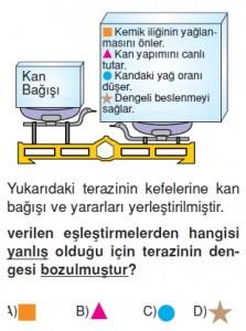 Elektronikyüzyilkonutesti7002
