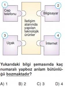 Elektronikyüzyilkonutesti7008
