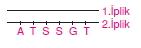 Hücrebölünmesivekalitimcözümlütest1008