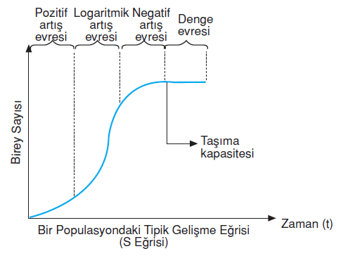Populasyon_buyume_tipleri
