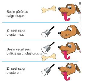 Sartlanma_Yolu_ile_Ogrenme