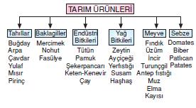 Tarim_urunleri