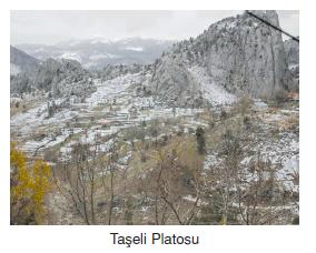 Taseli_Platosu
