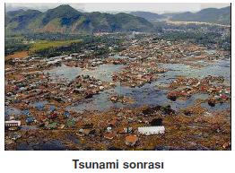Tsunami_sonrasi