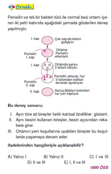 bakterilerde_ureme_001