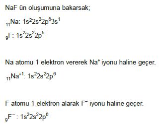 iyon_verme