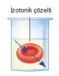 izotonik_cozelti
