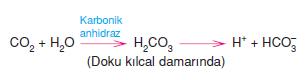karbondioksit_tasinmasi
