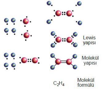 lewis_molekul_yapisi