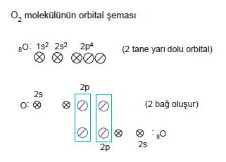 oksijenin_orbitali