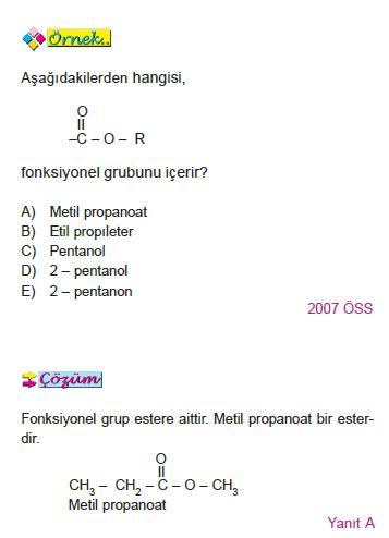 ornek_