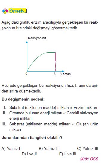 ornek_enzimler