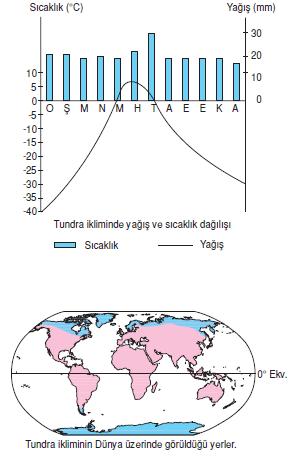 tundra_iklimi