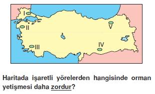 turkiyede_su_toprak_ve_bitki_varligi_cozumlu_test_019