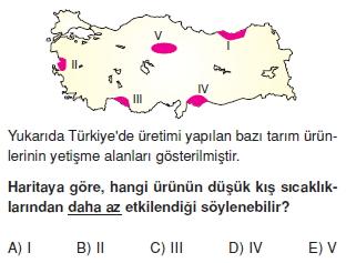 turkiyede_tarim_yerlesme_hayvancilik_balikcilik_konu_testi_1_007