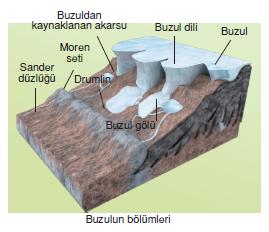 Buzulun_bolumleri