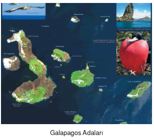 Galapagos_Adalari