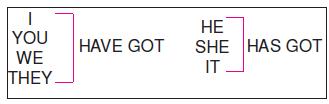 Have_Got_–_Has_Got