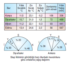 step_iklimi_yagislari
