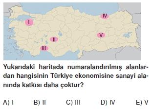 turkiyede_sanayi_cozumlu_testi_011